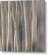 Forest Of Dreams 2  Panorama Metal Print