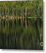 Forest Of Reflection Metal Print
