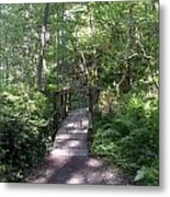 Forest Passage Metal Print