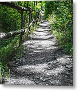 Forest Path Metal Print by Dobromir Dobrinov
