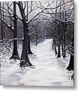 Forest Path In Winter Metal Print