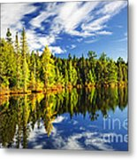 Forest Reflecting In Lake Metal Print