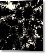 Forest Sky Metal Print