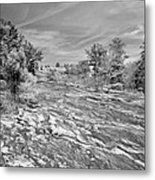 Forest Slope And Sky In Black And White Metal Print