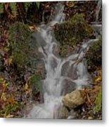 Forest Stream Cascade Metal Print