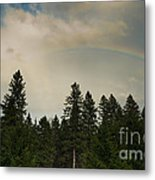 Forest Under The Rainbow Metal Print