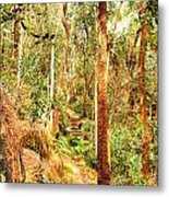 Forest Walk 7 Metal Print