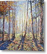 Forest Walking Metal Print