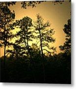Forest Waltz Metal Print