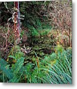 Forest Wetlands II Metal Print
