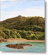 Forested Coast Line Metal Print