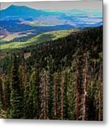 Forested Volcanic Slopes Metal Print
