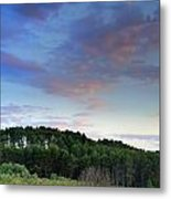 Forests Metal Print