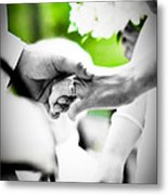 Forever Metal Print by BandC  Photography
