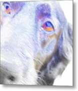 A Dog Will Be Forever Yours  Metal Print