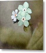 Forget Me Not 03 - S07bt07 Metal Print