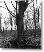 Forgotten Spirit Metal Print