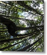 Fork In The Sky Metal Print