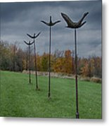 Formation Flying Metal Print