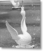 Forsyth Park Fountain - Black And White 3 2x3 Metal Print