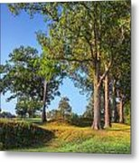 Fort Donelson Metal Print