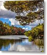 Fort Mountain State Park Lake Trail Metal Print