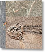 Fossil Fishing Metal Print