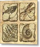 Fossils Metal Print