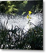 Fountain And Spring Flowers Metal Print
