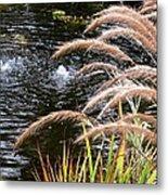 Fountain Grass Metal Print