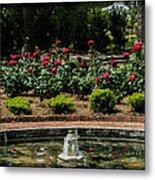 Fountain Of Roses Metal Print