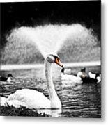 Fountain Swan Metal Print