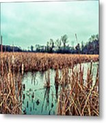 Four Corners Wetlands Metal Print