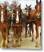 Four Horse Power Metal Print by B Wayne Mullins
