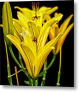 Four In A Row Metal Print
