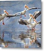 Four Pelican Landing Watercolor Effect Metal Print
