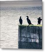 Four Point Lookout Metal Print