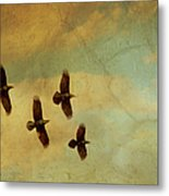 Four Ravens Flying Metal Print