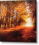 Four Seasons Autumn Impressions At Dawn Metal Print
