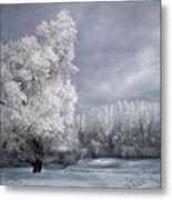 Four Seasons - Winter Metal Print by Akos Kozari