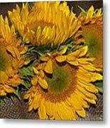 Four Sunflowers Metal Print