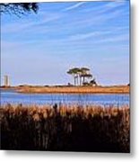 Four Trees H Metal Print