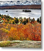 Fourth Lake From Above Metal Print