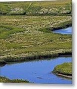 Fox Creek Marsh Metal Print