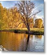 Fox River-jp2419 Metal Print
