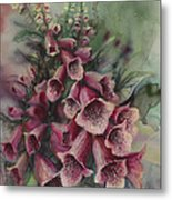 Foxgloves Metal Print