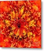 Fractal Chrysanthemum Metal Print