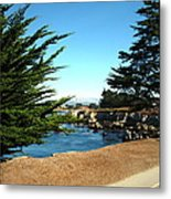 Framed By Cypress Trees Metal Print