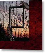 Framed Cherry Blossoms - Featured In Comfortable Art And Nature Groups Metal Print