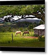 Framed Metal Print by Don Powers